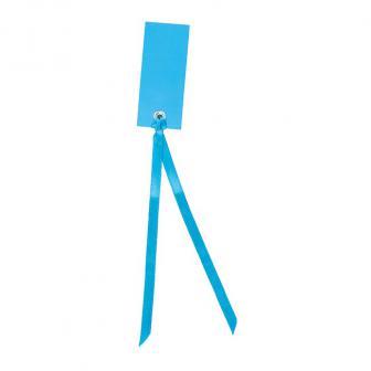 12 cartons nominatifs personnalisables avec ruban en satin - turquoise