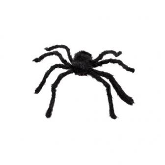 "Déco de salle ""Araignée Tarentule"" 19 cm x 43 cm"