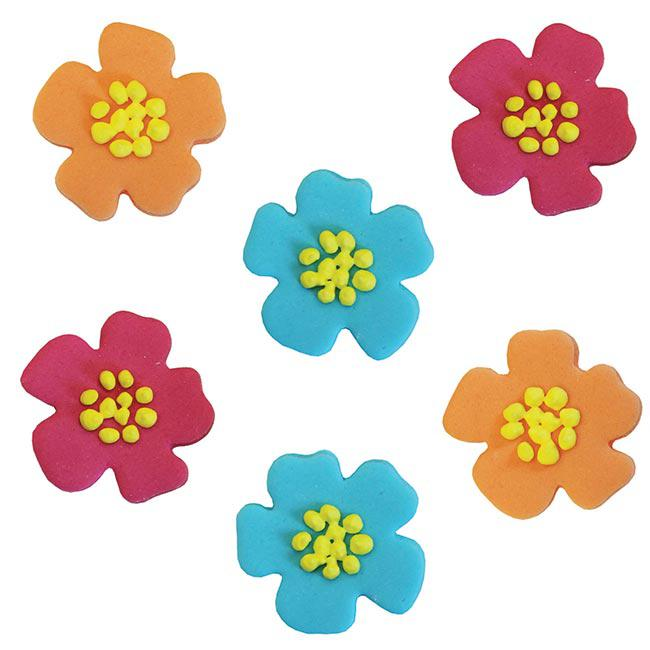 d 233 co comestible pour g 226 teau quot fleurs d hibiscus color 233 es quot 6 pcs 224 prix minis sur decoagogo fr