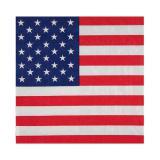 "20 serviettes ""United States of America"""