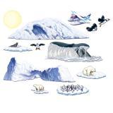 """Déco murale """"Antarctique"""" 149 cm 12 pcs"""